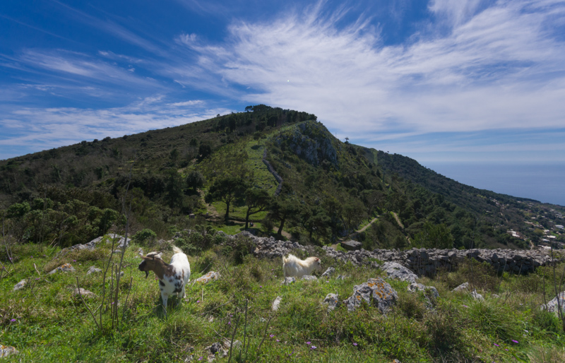 Cetrella e Monte Solaro: il paradiso ad Anacapri