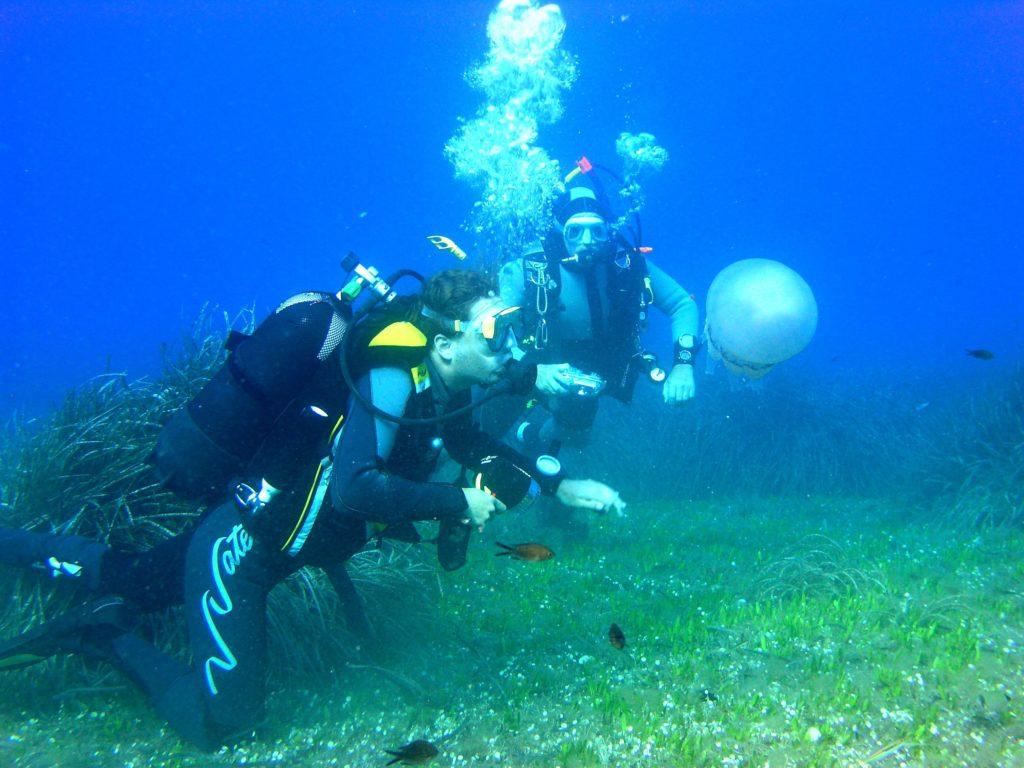 Canarie-scuba