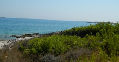 Istria spiagge: le più belle in Croazia