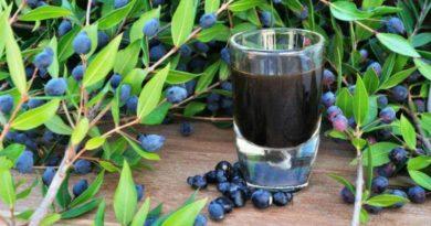 Il liquore di mirto fatto in casa: assaggia il nettare degli dei