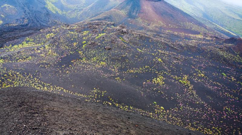 splendida immagine di uno dei crateri del vulcano etna