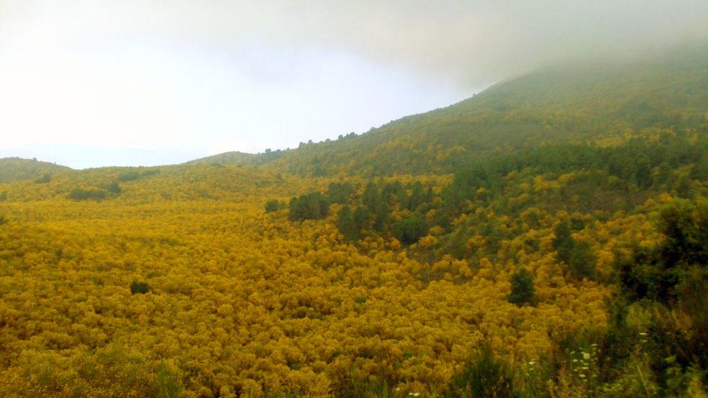 valle dell'inferno trekking campania