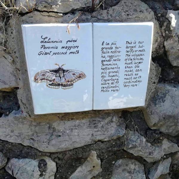 Il sentiero dei Fortini di Anacapri e le maioliche di Sergio Rubino