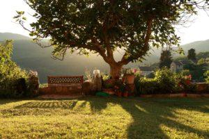 Paesaggio che mostra la bellezza della natura a Chianti