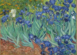 Iris tra i fiori di Van Gogh